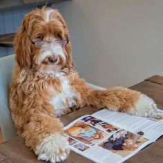 'Just doing a little light reading. I get a kick out of some of the magazine…