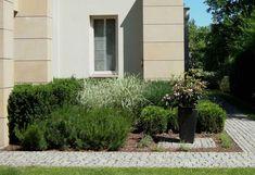 Nowoczesny ogród z trawami - Tajemniczy Ogród Garden Modern, Plants, Modern Gardens, Plant, Planets