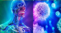 Study: Fasting for Three Days can Regenerate the Entire Immune System of Humans