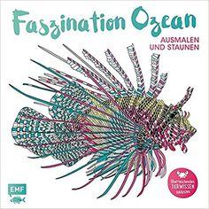 Faszination Ozean – Ausmalen und Staunen: Überraschendes Tierwissen inklusive Richard Merritt, Claire Scully: Bücher