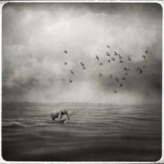 making waves by beata bieniak fine art photography print Photo D Art, Art En Ligne, Making Waves, Surreal Art, Oeuvre D'art, Black And White Photography, Fine Art Photography, Les Oeuvres, New Art