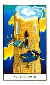 February 21 Tarot Card: The Tower (Connolly deck) Life as you know it could take a major turn now, leaving you feeling like the ground's been pulled out from under you. The Tower Tarot Card, Tarot Major Arcana, Tarot Card Meanings, Spiritual Guidance, Picture Cards, Tarot Decks, Deck Of Cards, Tarot Cards, How Are You Feeling