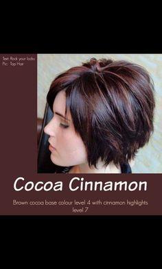 Cocoa Cinnamon Brown Hair Color