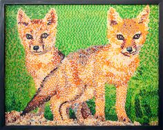 These cute critters are native to the Alberta and Saskatchewan area and are on Canada's endangered species list. The portrait was created in Montreal using Pink Grapefruit, Orange, Cantaloupe/Melon, Strawberry Daiquiri and a bevy of other Jelly Belly flavors to capture the Swift Fox's playful nature.