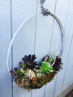 A personal favorite from my Etsy shop https://www.etsy.com/listing/272892632/repurposed-wine-barrel-ring-succulent