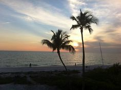 Ft. Meyers Beach Fl. / Sunday S *Photographer