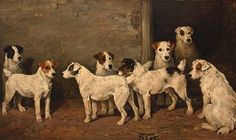 eight wire fox terriers in a kennel, john emms, 19th century