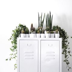 Combine natural elements with your steel storage to create the perfect balance - lockers available from metaloffice