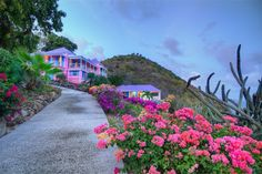 Extraordinary Property of the Day: Colorful Caribbean Sanctuary in Belmont, Tortola British Virgin Islands