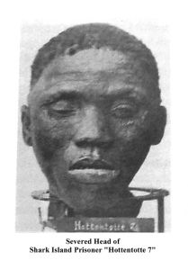 Studies on Nama, Herero and mulattoes at the camps supported German ideas about race and genocide. About 3,000 skulls were sent to Germany for further study.