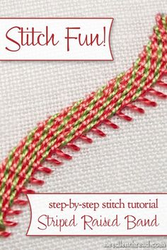 Stitch Fun: Diagonally Striped Raised Band – NeedlenThread.com