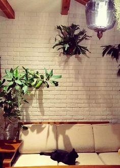 壁/天井の画像 by planteさん | 壁/天井とコウモリラン・ビカクシダとカフェみたいな暮らしコンテストと観葉植物