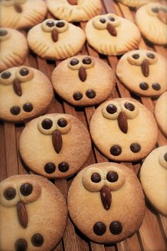 YaY!!! Owl Cookies!! ☺☺☺ @Sandra Rasmussen