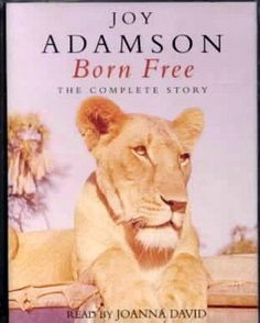 """""""Born Free"""" by Joy Adamson nurtured a love for nature and the as yet unfulfilled dream to travel to Kenya and Tanzania. National Geographic was fundamental to my love for exploring my world, photographing and learning about it."""