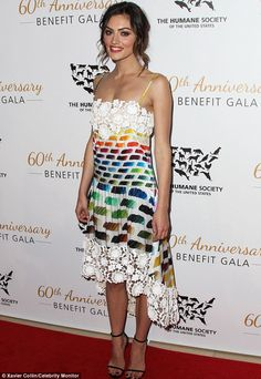 Splash of colour: Phoebe Tonkin rocked a stylish Chanel rainbow dress to The Humane Society Of The United States 60th Anniversary Benefit Gala - April 2014