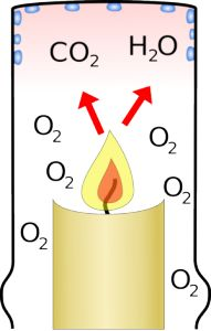 Materials – per 2 students votive candle small beaker large beaker ruler student handout (CandleObservations) matches & beaker with water for spent matches I light the candles for the stu…