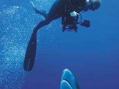 Shark photographer Andy Casagrande combines steel nerves and clever rigs