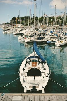 Marina, Madeira Island   Raquel Fareleira '15