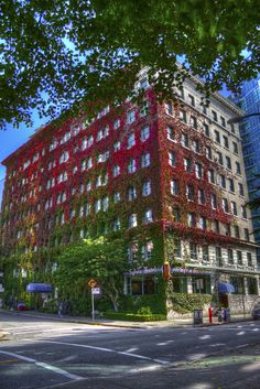 Sylvia Hotel, Vancouver, Canada ~this is where I stay when I go to Vancouver.my favorite city on earth Vancouver Bc Canada, Vancouver Island, Vancouver Architecture, Seymour, Visit Canada, Canada Eh, Amazing Buildings, Photographs Of People, Best Places To Travel