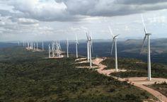 O Complexo Alto do Sertão I conta com 14 parques e 184 aerogeradores    A energia eólica (gerada a partir do vento) é uma das fontes de energia limpa que mais cresce no Brasil. No mês de julho, a empresa Renova Energia, primeira companhia especializada em energia renovável listada na BM inaugurou o Complexo Eólico Alto Sertão I, o maior da América Latina.