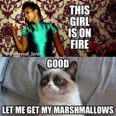 Grmpy cat, grumpy cat funny, grumpy cat jokes, best grumpy cat ...For the best memes and humour visit www.bestfunnyjokes4u.com/rofl-best-funny-joke-pic/