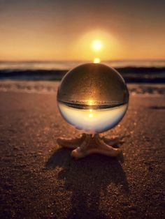 Starfish Stand for Crystal Ball 🔮 Reflection Photography, Types Of Photography, Abstract Photography, Macro Photography, Amazing Photography, Street Photography, Hades Disney, Bubble Pictures, Cool Pictures