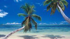 Aruba Dreaming of relaxing on the beach during our getaway to Aruba! Beach Scene Wallpaper, Strand Wallpaper, Paradise Wallpaper, Ocean Wallpaper, Travel Wallpaper, Images Wallpaper, Wallpaper Desktop, Mexico Wallpaper, Isla Margarita