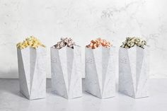 <p>Spanish creative agency Tatabi Studio had the excellent idea to create Diz-Diz, a project that offers flavored popcorns such as Parmesan cheese, vanilla, curry or cinnamon. A stylish visual identit
