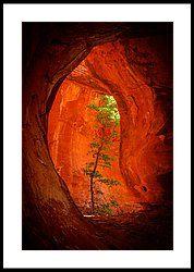 Boynton Canyon 04-343 Framed Print by Scott McAllister