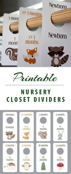 closet dividers