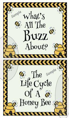 Hexagon shaped activities, beekeeping, bee crafts, honey bee