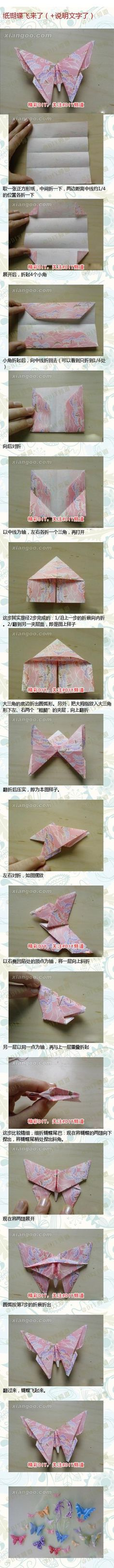 Origami Moth Butterfly Paper F
