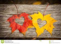 autumn leaves - Google zoeken