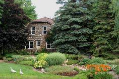 Google Image Result for http://images.fineartamerica.com/images-medium-large/the-stone-cottage-grace-grogan.jpg
