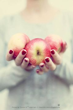 Fräulein Klein : apples and cinnamon Petit Fruit, Apfel, Apple Orchard, Apple Farm, Giving Hands, Food Styling, Macarons, Food Photography, Apples Photography