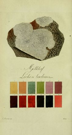 Antique Lichen Color Chart