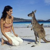 Want to hang out with a wallaby?