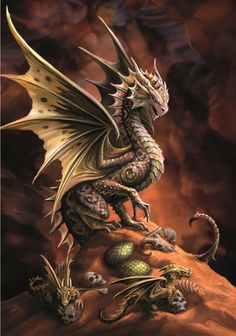 (Product Code: rAN74) Desert Dragon Card, Anne Stokes Age of Dragons Cards - EnchantedJewelry