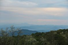 Looking west from Bearwallow Mountain toward Mt. Pisgah. It's easy to see how the Blue Ridge Mountains get their name.