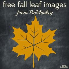 How To Use Free Fall Leaf Images in PicMonkey from Blissful Roots