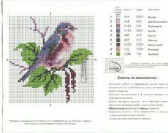 Gallery.ru / Фото #140 - птички - irinika