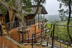 Various Tree Houses to Live In for Your Inspirations: Contemporary Porch Idea Of Tree Houses To Live In Designed With Dark Iron Railing Surrounding The Benches ~ BESS Architecture Inspiration