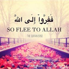 allah, islam, and muslim image Allah Quotes, Quran Quotes, Hindi Quotes, Religious Quotes, Islamic Quotes, Muslim Quotes, Islamic Art, Moslem, Allah God