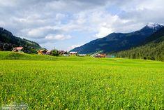 Summer meadow in Mittelberg Alpine Village, Hiking, Mountains, Places, Nature, Summer, Travel, Walks, Voyage
