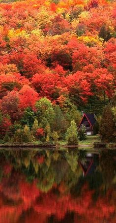 Cozy cabin in the Laurentian Mountains of Quebec, Canada • photo: Alan Marsh on Designpics | @explorecanada