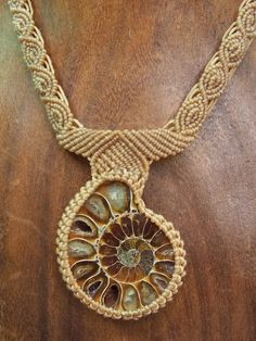 Ammonite Natural Fossil Prehistoric Crystallized by Fossils2Art