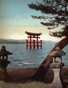 THE GREAT TORII AT MIYAJIMA. Ca.1890s Large format photograph by an unknown Japanese photographer. Okinawa, Places To Travel, Places To Visit, Torii Gate, Temple, Birds In The Sky, Miyajima, Fantasy Places, Japan Photo