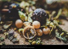 Foto 'Gewürzmischung III' von 'johny schorle' #food #foodphotography #photography #stock  #paleo #vegan #vegetarian #macrophotography #spices #seasonings #blend
