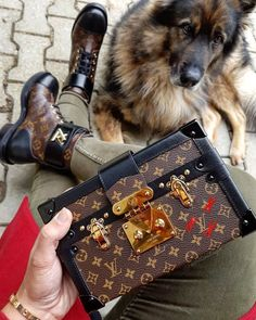 Louis Vuitton Monogram Handbags & Boot.