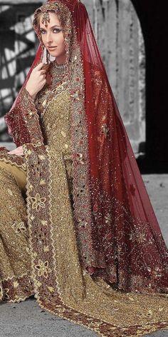 Brick Red Embroidered Saree